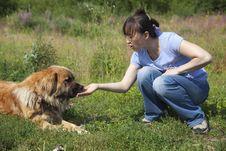 Free Lady Feeding Dog Royalty Free Stock Photo - 15678705