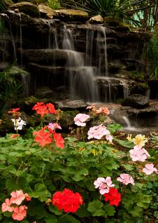 Waterfall And Flower Stock Images