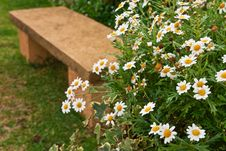 Bench And Flowers Royalty Free Stock Images