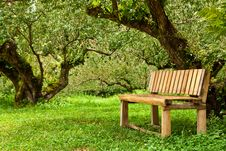 Free Wood Bench In Garden Stock Images - 15679694