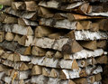 Free Woodpile. Royalty Free Stock Photography - 15681767