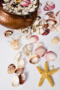 Free Cooper Pot, Shellstar, And  Seashell Collection Royalty Free Stock Photo - 15686365