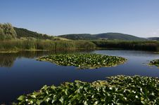 Umbria Lake Royalty Free Stock Images