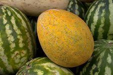 Fruit   Melon   Fresh  Ripe Royalty Free Stock Photos