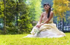 Free Beautiful Bride Stock Photo - 15682460