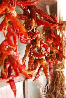 Free Dried Red Peppers Stock Photography - 15683942