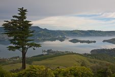 View From Larnach Castle Royalty Free Stock Photography