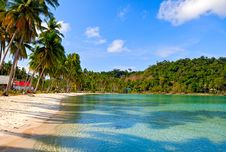Free Tropical Beach Stock Photos - 15688553