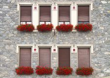 Free Windows With Flowers Stock Photos - 15688763