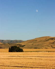 Free Harvest Moon Stock Photography - 15689142