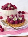 Free Fresh Raspberry Tart Royalty Free Stock Photography - 15696117