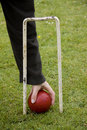 Free Croquet Ball And Hoop Royalty Free Stock Images - 15696519