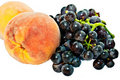 Free Peaches And Grapes Royalty Free Stock Photos - 15697378