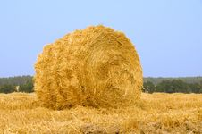Free Meadow Of Hay Bales Royalty Free Stock Photos - 15690338