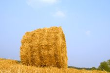 Free Meadow Of Hay Bales Royalty Free Stock Photos - 15690398