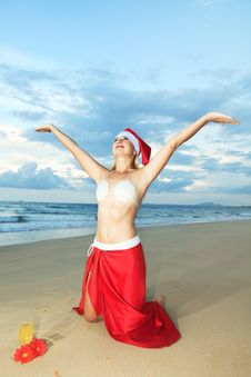 Free Tropical Christmas Royalty Free Stock Photography - 15690917