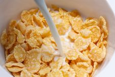 Free Corn Flakes Royalty Free Stock Images - 15691339