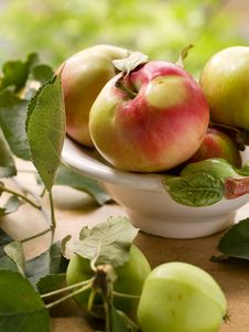 Free Fresh Apples Royalty Free Stock Photos - 15696058