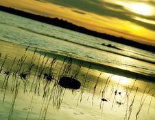 Free Sunset Over The Coast Stock Photo - 15696530