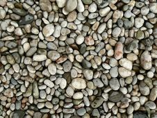 Free Texture Of The Pebbles Royalty Free Stock Photo - 15698035