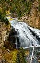 Free Gibbon Falls Royalty Free Stock Photo - 1570845