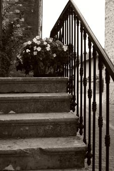 Free Old Stairs With Flowers Stock Image - 1570741