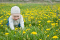 Free Little Child Royalty Free Stock Photography - 15705177