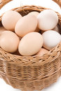Free Plate And Eggs Stock Images - 15707454