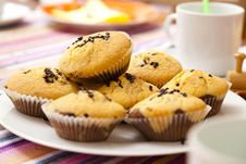 Free Chocolate Chip Muffins Stock Photos - 15704403
