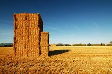 Stacks Of Hay Under A Deep Blue Sky. Stock Image