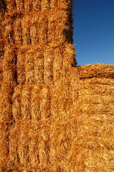 Free Stacks Of Hay Stock Image - 15705081