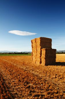 Stacks Of Hay Under A Deep Blue Sky Royalty Free Stock Images