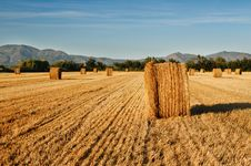 Free Rolls Of Hay Against Mountains. Stock Image - 15705311