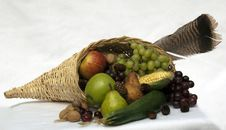 Free Cornucopia Stock Photos - 15705823