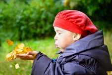 Free Girl Blowing On Autumn Leaves Stock Photos - 15707483