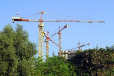 Free Cranes Stock Photography - 15707772