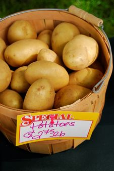 Free Basket Of Potatoes Stock Photos - 15709093