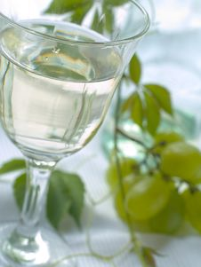 Free Wine Stock Photography - 15709292