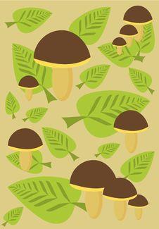 Free Mushroom Background Stock Photography - 15709932