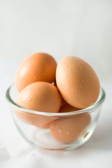 Free Eggs Stock Images - 15715194
