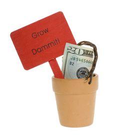 Free Twenty Dollar Bill In A Clay Pot Stock Photo - 15715340