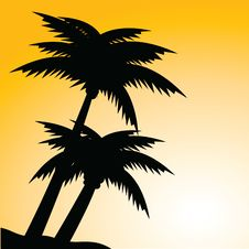 Free Palms Stock Images - 15717004