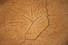 A Log Of Pine Stock Images