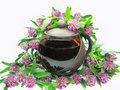 Free Floral Clover Tea In Teapot Royalty Free Stock Photos - 15725228