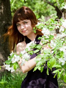 Free Beautiful Girl In Blossom Orchard Stock Photos - 15721973