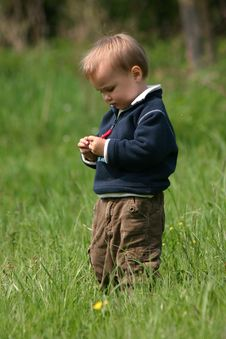 Boy In The Grass Royalty Free Stock Photography