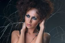 Free Portrait Of A Lovely Woman In A Bizarre Makeup Stock Photography - 15723392