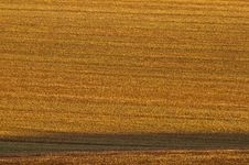 Free Ploughed Field In Side Light Stock Photography - 15728562