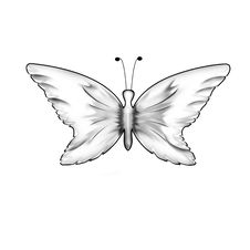 Free Butterfly Royalty Free Stock Photography - 15729257