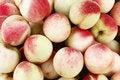 Free Fresh Juicy Peaches Stock Photography - 15732012
